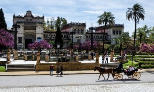 Zdjęcie HISZPANIA / Andaluzja / Sevilla / po drugiej stronie alei...