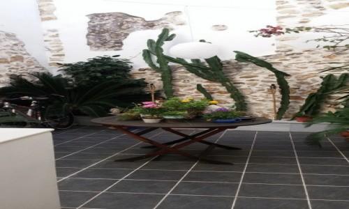 Zdjecie HISZPANIA / Alicante / Pego / Patio w Pego