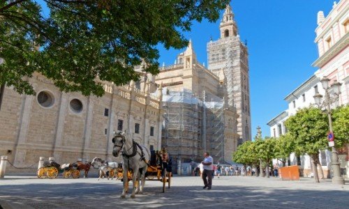 Zdjęcie HISZPANIA / Andaluzja / Sewilla / Katedra Najświętszej Marii Panny