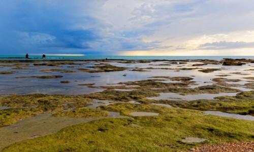 Zdjęcie HISZPANIA / Andaluzja / Kadyks / Kolorowy Atlantyk