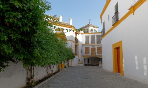 Zdjęcie HISZPANIA / Andaluzja / Sewilla / Plaza de toros