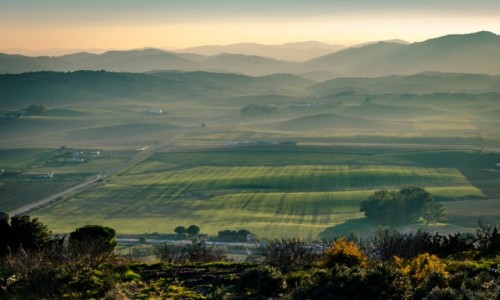 HISZPANIA / Andaluzja / Medina-Sidonia / grudzień w zieleni...