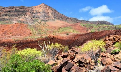 Zdjęcie HISZPANIA / Gran Canaria / Wąwóz (Barranco de Fataga) / Necropolis de Arteara