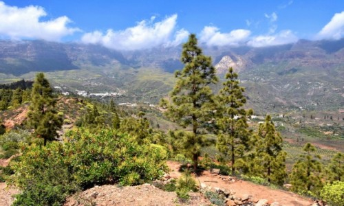 Zdjecie HISZPANIA / Gran Canaria / Wąwóz (Barranco de Fataga) / Widok na dolinę