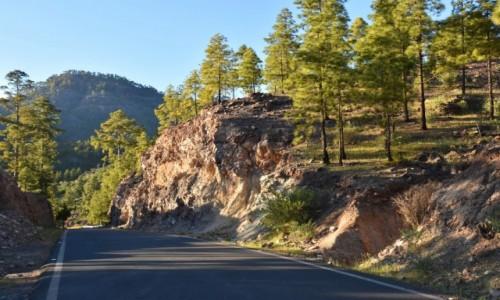 Zdjęcie HISZPANIA / Gran Canaria / Parque Rural del Nublo / W powrotnej drodze
