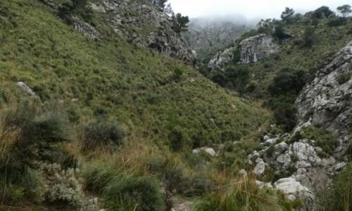 Zdjecie HISZPANIA / Majorka / Serra de Tramuntana / W drodze do schroniska Tossals Verds