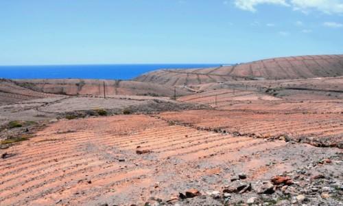 Zdjęcie HISZPANIA / Gran Canaria / południowe wybrzeże / Południowe wybrzeże
