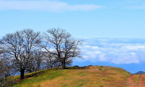 Zdjecie HISZPANIA / Gran Canaria / Północne wybrzeże / Widok