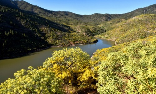 Zdjęcie HISZPANIA / Gran Canaria / Parque Rural del Nublo / Jadąc z Artenary do La Aldea de San Nicolas