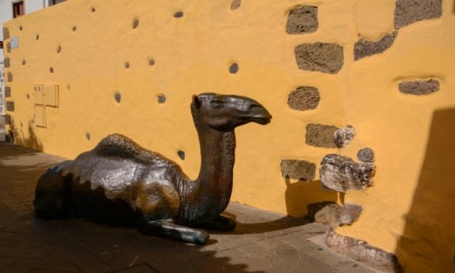 HISZPANIA / Wyspy Kanaryjskie - Gran Canaria / Aguimes / czas odpocząć...