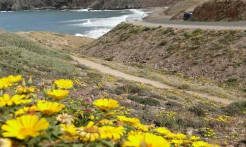 Zdjęcie HISZPANIA / Andaluzja / Przylądek Cabo de Gata / Wiosna w Andaluzji.