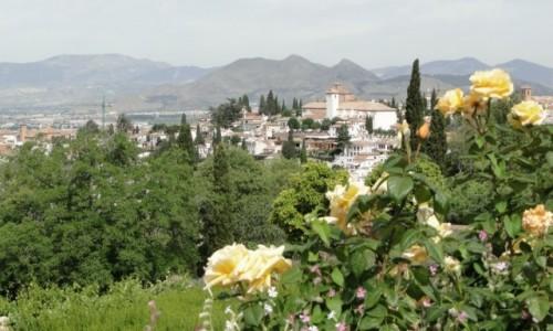 Zdjęcie HISZPANIA / Andaluzja / Granada / W ogrodach Alhambry.