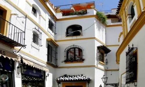 Zdjęcie HISZPANIA / Andaluzja / Sewilla / Klimaty Andaluzji.