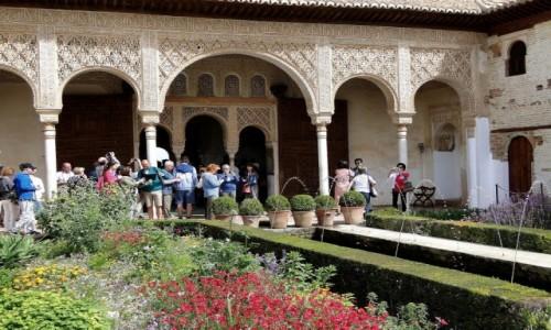 Zdjecie HISZPANIA / Andaluzja / Granada / Klimaty Andaluzji - Alhambra.
