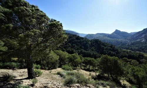 Zdjecie HISZPANIA / Andaluzja / Caminito del Rey / Po drodze