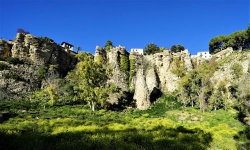 Zdjęcie HISZPANIA / Andaluzja / Ronda / Baśniowa łąka