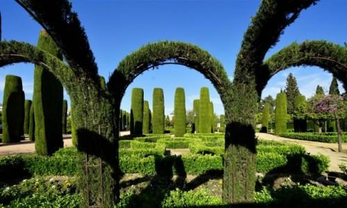 Zdjęcie HISZPANIA / Andaluzja / Kordoba - Alkazar królów chrześcijańskich  / Zielone łuki i kolumny