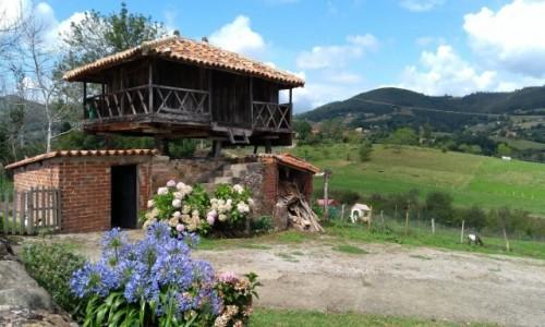 Zdjecie HISZPANIA / Asturia / Grado / Horru