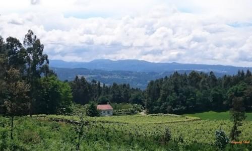 Zdjecie HISZPANIA / Galicia / Lestedo / Krajobraz galicyjski