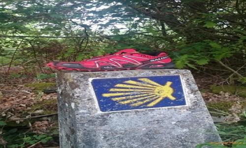 Zdjecie HISZPANIA / Galicia / Cea / Oznakowanie szlaku