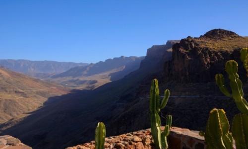 Zdjecie HISZPANIA / Wyspy Kanaryjskie / Gran Canaria / wąwóz Fataga