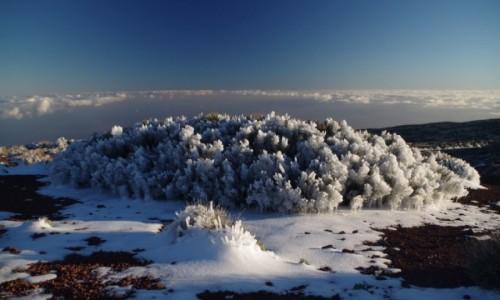 Zdjecie HISZPANIA / Park Narodowy Teneryfy / Okolice obserwatorium astronomicznego Teide / Teneryfa po burzy lodowej