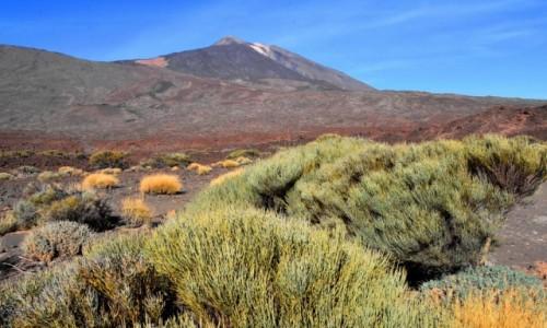 HISZPANIA / Teneryfa / Park Narodowy Teide / Widok na Pico del Teide