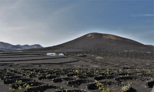 HISZPANIA / Wyspy Kanaryjskie / Parque Nacional de Timanfaya / Lanzarote, winnice