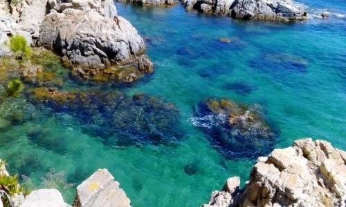 Zdjecie HISZPANIA / Katalonia / Calella de Palafrugell / Taka woda