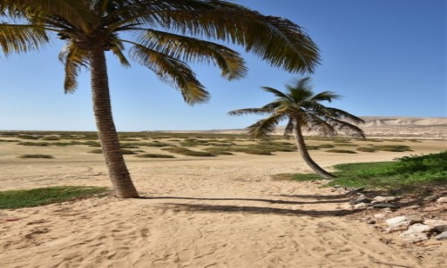 HISZPANIA / Fuerteventura / Playa de Sotavento de Jandía / Playa de Sotavento de Jandía