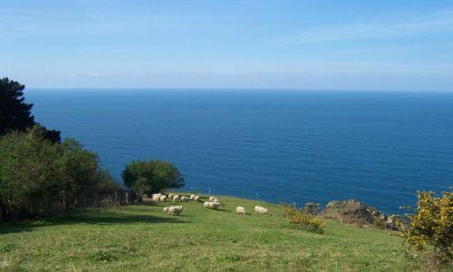 Zdjecie HISZPANIA / Gipuzkoa / Okolice Orio / Camino de Santi