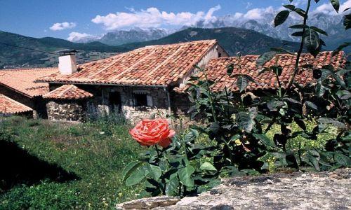 Zdjecie HISZPANIA / Kantabria / Tudes / Róża Kantabrii