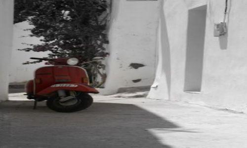 Zdjecie HISZPANIA / Andaluzja / Jerez / Jerez