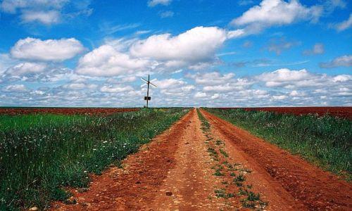 Zdjęcie HISZPANIA / okolice Salamanki / w drodze / ruda ziemia ...w drodze przez Hiszpanię