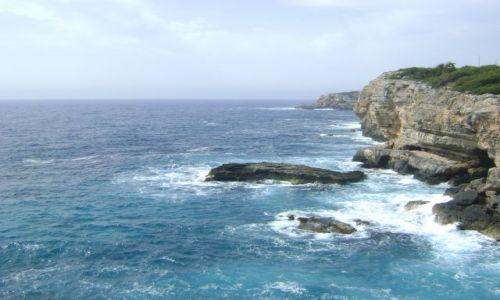 Zdjecie HISZPANIA / Majorka / Cala Mondrago / Wybrzeże wschod