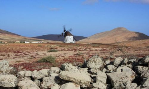 Zdjecie HISZPANIA / brak / Villawerde / Fuerteventura