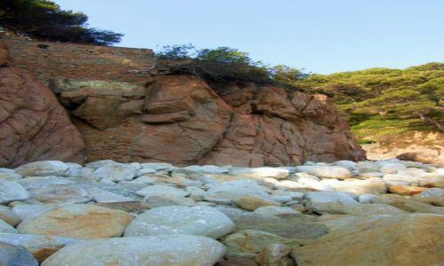Zdjecie HISZPANIA / Costa Brava / Santa Cristina / Na tej plaży było pełno krabów, ale pouciekały:)