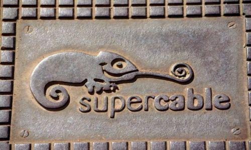 Zdjecie HISZPANIA / Andaluzja / Malaga / kameleon na ulicy w Maladze