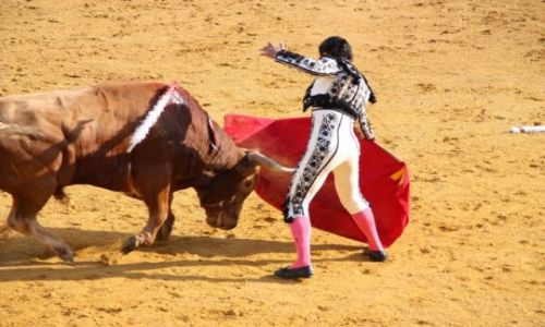 Zdjęcie HISZPANIA / La Rioja / Haro / Corrida de toros