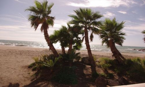 Zdjecie HISZPANIA / Andaluzja / Almeria / oaza okablowana