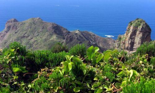 HISZPANIA / Tenerife / Teneryfa wschodnia / Wschodnia czesc Teneryfy