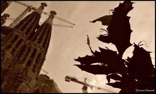 HISZPANIA / Katalonia / Barcelona / Sagrada Familia