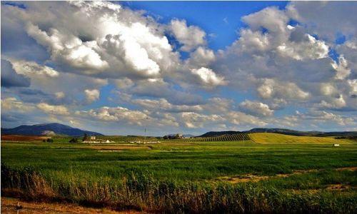Zdjecie HISZPANIA / Andaluzja / Pociągiem na trasie: Ronda-Malaga / Krajobraz jak malowany