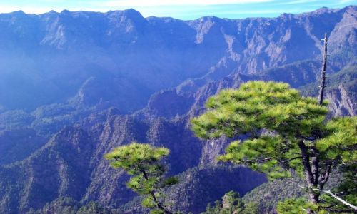 HISZPANIA / La Palma / La Palma / Zbocze krateru Caldera de Taburiente
