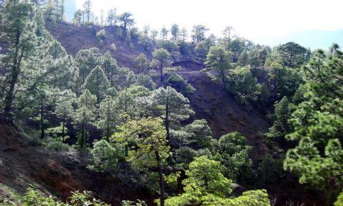 HISZPANIA / La Palma / La Palma / Zbocze krateru Caldera de Taburiente (2)