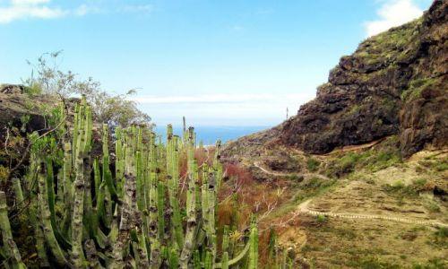 HISZPANIA / Teneryfa / Teneryfa / Wewnątrz przełęczy Barranco del Infoerno