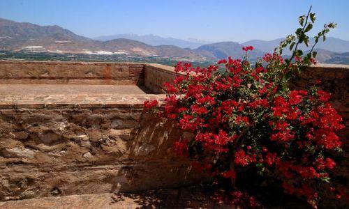 Zdjecie HISZPANIA / andaluzja / gdzies na wschod od Malagi ;-) / z widokiem na gory