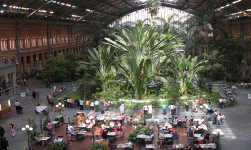 Zdjecie HISZPANIA / - / Madryt / Dworzec kolejowy w Madrycie