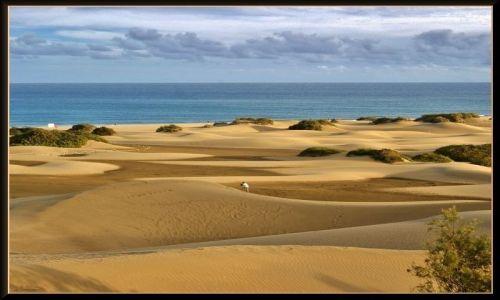HISZPANIA / Wyspy Kanaryjskie - Gran Canaria / Maspalomas / Wydmy Maspalomas
