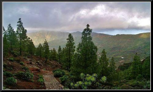 HISZPANIA / Wyspy Kanaryjskie / Gran Canaria / W centrum wyspy - góry
